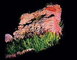 La tomba di Tulliola illuminata di rosa
